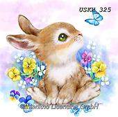Kayomi, EASTER, OSTERN, PASCUA, paintings+++++,USKH325,#e#, EVERYDAY ,rabbits