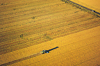aerial photograph of a combine harvester harvesting a field in the Central Valley, California