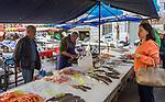 Frankreich, Provence-Alpes-Côte d'Azur, Nizza: Einkaufen in Nizza, z.B. Fisch und Meeresfruechte auf dem Place Saint-Francois | France, Provence-Alpes-Côte d'Azur, Nice: shopping fish and seafood at Place Saint-Francois