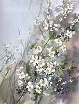 Painting of flowering blackthorn