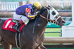 November 27, 2020: Lock Up, trained by D. Wayne Lukas wins Race 4, a maiden special weight, at Churchill Downs in Louisville, Kentucky on November 27, 2020. Jessica Morgan/Eclipse Sportswire.