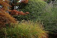Mialno,  giardino pensile,