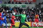 FIFA 2014 World Cup Qualifier - Wales v Croatia - Swansea - 26th March 2013 :  Croatia goalkeeper Stipe Pletikosa.