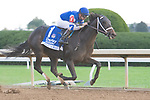 October 8, 2021: Juju's Map #1, ridden by jockey Florent Geroux wins the Darley Alcibiades (Grade 1) on opening day at Keeneland Racecourse in Lexington, K.Y. on October 8th, 2021. Jessica Morgan/Eclipse Sportswire/CSM