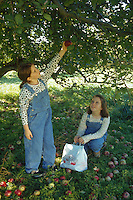 Girls picking apples.