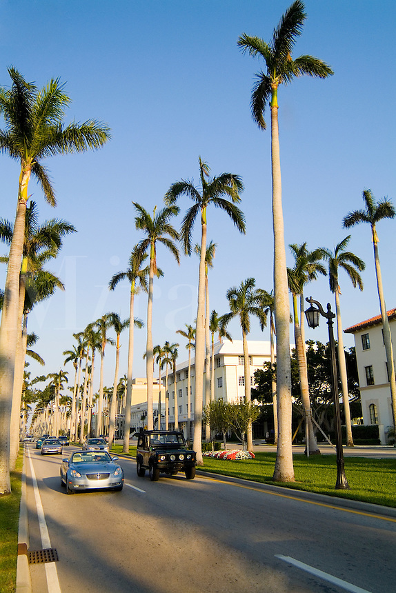 Expensive Real Estate and shopping on the Famous rich Royal Palm Way in Palm Beach Florida with palm trees and wealt