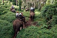 Tourists ride elephants at  Mae Sa Elephant Camp, Chaing Mai, Thailand