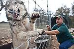 Exotic Animal Ranch
