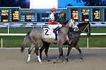 January 16, 2016: Fish Trappe Road with Robby Albarado up in the Lecomte Stakes in New Orleans Louisiana. Steve Dalmado/ESW/CSM