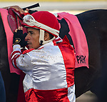 December 8, 2018: The Puerto Rican duo of #8 Exclusivo and Juan Carlos Diaz take third in the Confraternity Caribbean Cup Stakes (Black Type) during the Clasico del Caribe at Gulfstream Park on December 8, 2018 in Hallandal e Beach, FL. (Photo by Damon Burden/Eclipse Sportswire/CSM)