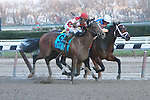 Overanalyze (no. 1A), ridden by Ramon Dominguez and trained by Todd Pletcher, defeats Normandy Invasion (red cap) to win the 99th running of the grade 2 Remsen Stakes for two year olds on November 24, 2012 at Aqueduct Race Track in Ozone Park, New York.  (Bob Mayberger/Eclipse Sportswire) (( Special transmission of horses in the Top 25 for points for the 2013 KentuckyDerby ))
