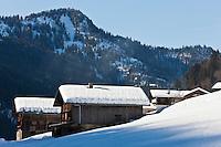 Europe/France/Rhône-Alpes/74/Haute-Savoie/Le Grand-Bornand/ Chalets  dans la  Vallée du Bouchet