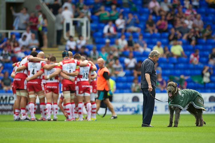 The new London Irish mascot, Mr Niall, before the Aviva Premiership match between London Irish and Gloucester Rugby at the Madejski Stadium on Saturday 8th September 2012 (Photo by Rob Munro)