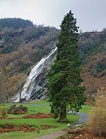 Powerscourt waterfall,Powerscourt Estate, Enniskerry, County Wicklow, Ireland. At 121 metres, it is the highest waterfall in Ireland.