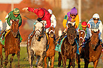 Julien Leparoux celebrates premature in Mile Division as Robby Albarado aboard Court Vision (Purple Cap)  Wins The Breeders' Cup Mile (Grade 1) at Churchill Downs in Louisville, KY  on 11/05/11. (Ryan Lasek / Eclipse Sportwire)