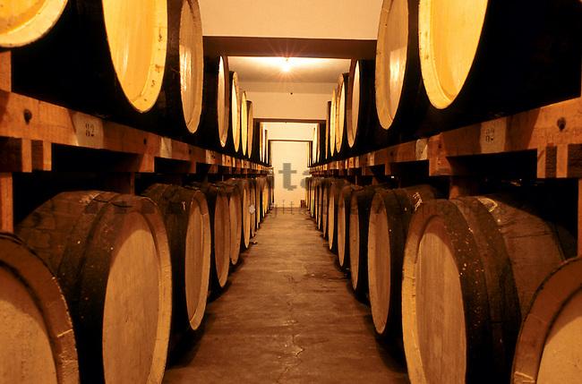 Weinkeller, Wine-Cellar, Episkopi, Cyprus, Zypern.