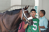 09/26/2015 - Turf Classic Day at Belmont Park