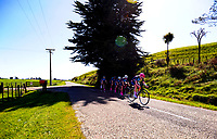 Palmerston North GHS senior A u20 girls in action during the NZ Schools Road Cycling championship day one team time trials at Koputaroa Road near Levin, New Zealand on Saturday, 30 September 2017. Photo: Dave Lintott / lintottphoto.co.nz