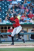 Alfredo Reyes (3) of the Indianapolis Indians at bat against the Charlotte Knights at BB&T BallPark on April 27, 2019 in Charlotte, North Carolina. The Indians defeated the Knights 8-4. (Brian Westerholt/Four Seam Images)