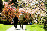 Senior couple strolls in Washington Park Arboretum's gardens, which provide peace and tranquility in the city.  Seattle, Washington.