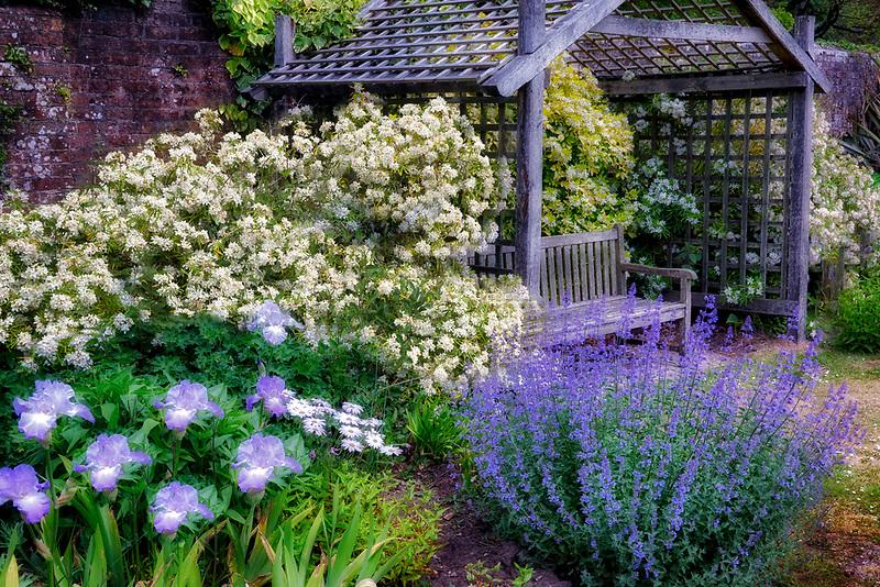 Bench and garden at The Walled Garden, Moreton, Dorset, England UK