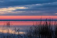 Sunrise on Pungo Lake, Pocosin Lakes National Wildlife Refuge