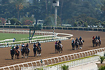 ARCADIA, CA  SEP 26:  The field in the post parade of the Unzip Me Stakes on September 26, 2020 at Santa Anita Park in Arcadia, CA. (Photo by Casey Phillips/Eclipse Sportswire/CSM.
