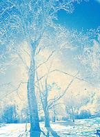 Winter wonderland in Cades Cove