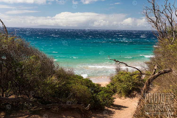 Swimmers enjoy a clear day at clothing-optional Makena Little Beach, Maui.