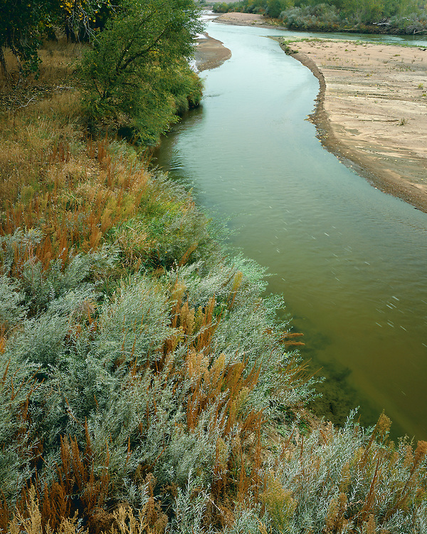 Fall scene along the South Platte River in eastern Colorado; Weld County, CO