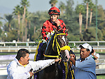 TRINNIBERG, ridden by Willie Martinez and trained by Shivananda Parbhoo, wins the Breeders' Cup Sprint at Santa Anita Park in Arcadia, California on November 3, 2012 over THE LUMBER GUY, ridden by John Velazquez and trained by Mike Hushion,