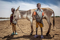 Two boys stand with their donkey in the town of Gao, located on the Niger River. /Felix Features