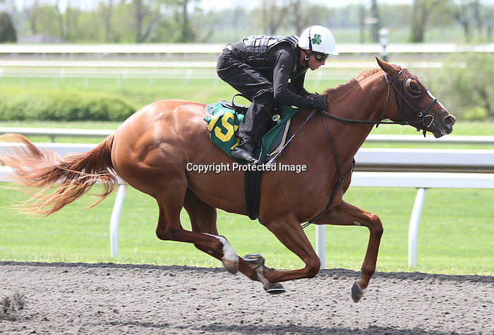Hip #157  BEAUTIFUL MISS  Tapit - Instant Coverage consigned by Niall Brennan Stables sold for $475,000 to Patrice Miller, agent.  April 9, 2012.