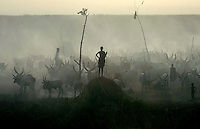A young Dinka man stands on a hillock amidst a herd of cattle at a settlement along Nile River..