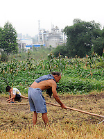 Farmers at Xiao Jiao village next to the Dong Qi Emei Polysilicon Project near Leshan, Sichuan, China, that have been damaged by gasses leaking from the plant. The villagers complain of contaminated vegetables and poisoned air and ground water from the plant.<br /> <br /> photo by Richard Jones/Sinopix