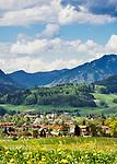 Deutschland, Bayern, Oberbayern, Chiemgau, Inzell: Fruehling im Chiemgau | Germany, Upper Bavaria, Chiemgau, Inzell: springtime scenery