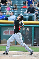 Nick Buss (17) of the Albuquerque Isotopes during the game against the Salt Lake Bees at Smith's Ballpark on April 21, 2014 in Salt Lake City, Utah.  (Stephen Smith/Four Seam Images)