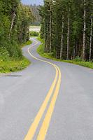 Double yellow line in winding roadway, Haines, Alaska
