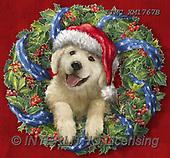 Marcello, CHRISTMAS ANIMALS, WEIHNACHTEN TIERE, NAVIDAD ANIMALES, paintings+++++,ITMCXM1767B,#XA# ,Christmas wreath ,dog