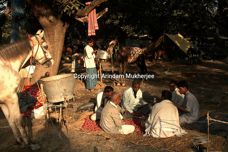 Horse owners play a game of card at Sonepur fair ground. Bihar, India, Arindam Mukherjee