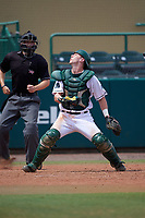 Dartmouth Big Green catcher Adam Gauthier (18) looks for a foul ball popup in front of umpire Chris Tipton during a game against the South Florida Bulls on March 27, 2016 at USF Baseball Stadium in Tampa, Florida.  South Florida defeated Dartmouth 4-0.  (Mike Janes/Four Seam Images)