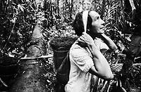 """Índio Werekena, morador da comunidade de Anamoim no alto rio Xié,carrega na cabeça um pacote de piaçaba  chamada de      """" piraíba """"  (Leopoldínia píassaba Wall),após cortá-la.  A  árvore que normalmente aloja os mais variados tipos de insetos representando um grande risco aos índios durante sua coleta . A fibra  um dos principais produtos geradores de renda na região é  coletada de forma rudimentar. Até hoje é utilizada na fabricação de cordas para embarcações, chapéus, artesanato e principalmente vassouras, que são vendidas em várias regiões do país.<br />Alto rio Xié, fronteira do Brasil com a Colômbia a a cerca de 1.000Km oeste de Manaus.<br />06/06/2002.<br />Foto: Paulo Santos/Interfoto Expedição Werekena do Xié<br /> <br /> Os índios Baré e Werekena (ou Warekena) vivem principalmente ao longo do Rio Xié e alto curso do Rio Negro, para onde grande parte deles migrou compulsoriamente em razão do contato com os não-índios, cuja história foi marcada pela violência e a exploração do trabalho extrativista. Oriundos da família lingüística aruak, hoje falam uma língua franca, o nheengatu, difundida pelos carmelitas no período colonial. Integram a área cultural conhecida como Noroeste Amazônico. (ISA)"""