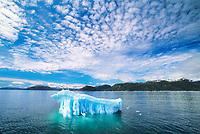 Glacier iceberg, altocumulous clouds, Prince William Sound, Alaska, ice berg