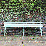 Park Bench on stage of Outdoor Theater, Mt. Tabor Park, Portland, Oregon.  Stone walls, wooden benches, stage, public, winter, evergreen, public, Portland Parks and Recreation, popular, tourism, moss, lichen, cedar trees, seating, events, venue.