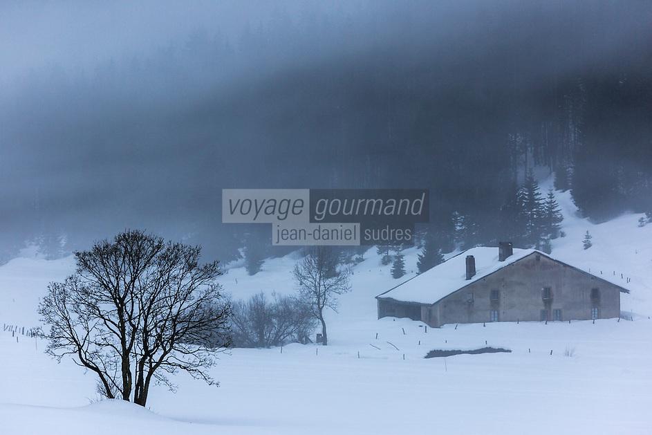 Europe/France/Franche Comté/39 /Jura/Chapelle-des-Bois: Brouillard à la Combe des Cives // France, Doubs, Chapelle des Bois, Fog Combe Cives