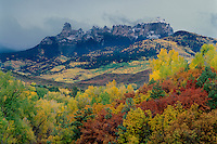 Narrowleaf cottonwood and gambel oak<br /> Chimney Rock and Couthouse Mountains<br /> San Juan Mountains<br /> Rocky Mountains, Colorado