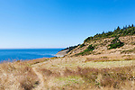 Hay field with view of Strait of Juan de Fuca,  Fort Ebey State Park.  Whibey Island, WA.
