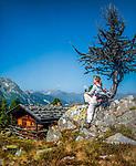 Oesterreich, Tirol, Zillertal, oberhalb Mayrhofen: Wandergebiet auf der Filzenalm | Austria, Tyrol, Ziller Valley, above Mayrhofen: hiking region at Filzenalm alpine pasture