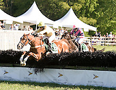 Saluda Sam stretches to victory in the Henry Collins at Radnor.