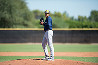 Milwaukee Brewers relief pitcher Wilber Diaz (71) gets ready to deliver a pitch during an Instructional League game against the San Diego Padres at Peoria Sports Complex on September 21, 2018 in Peoria, Arizona. (Zachary Lucy/Four Seam Images)